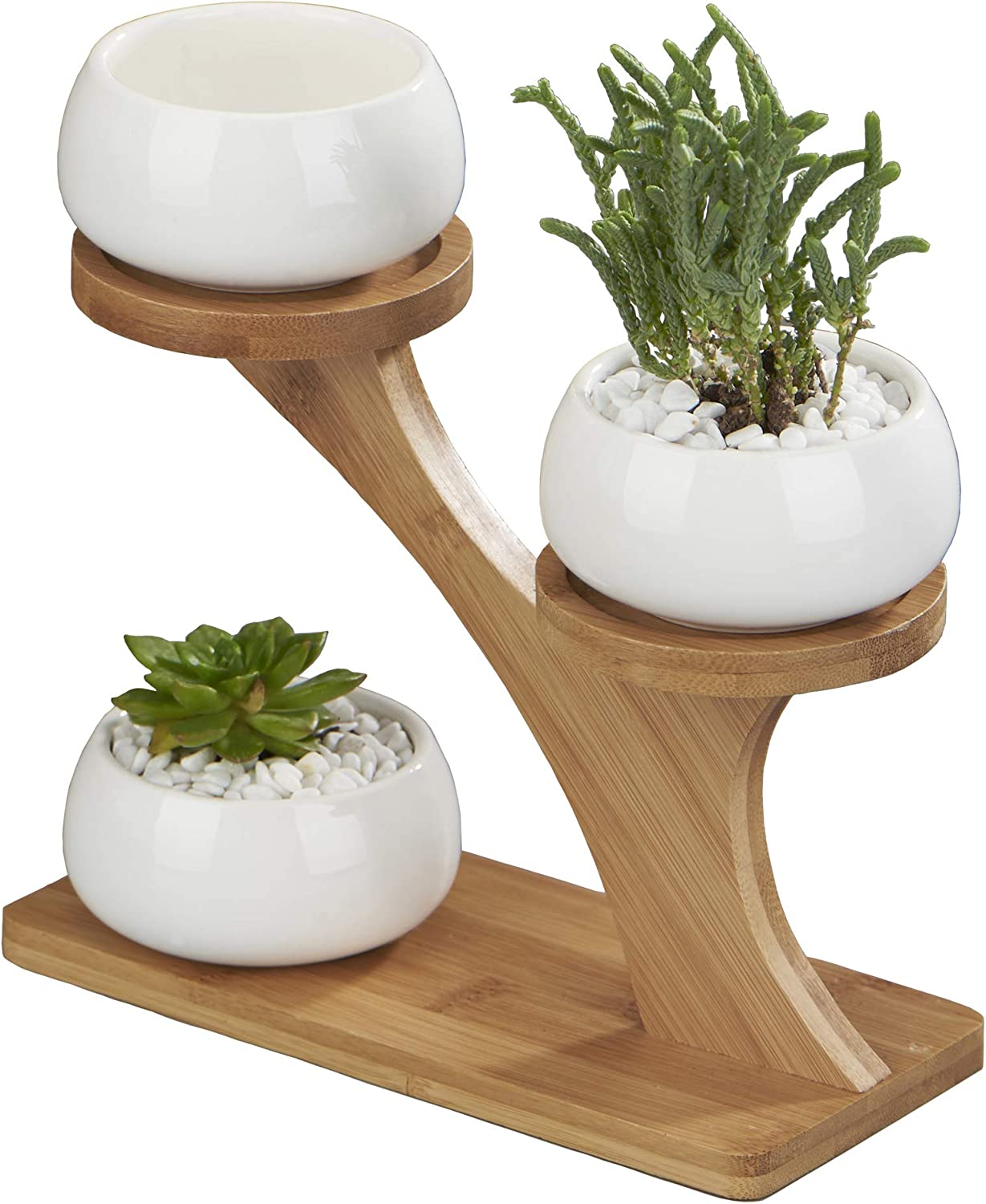 Amazon Com Flowerplus Planter Pots Indoor 3 Pack 3 Inch White Ceramic Decorative Small Round Succulent Cactus Flower Plant Pot With Tree Tier Bamboo Stand For Garden Kitchen Home Office Desk Decorations Kitchen