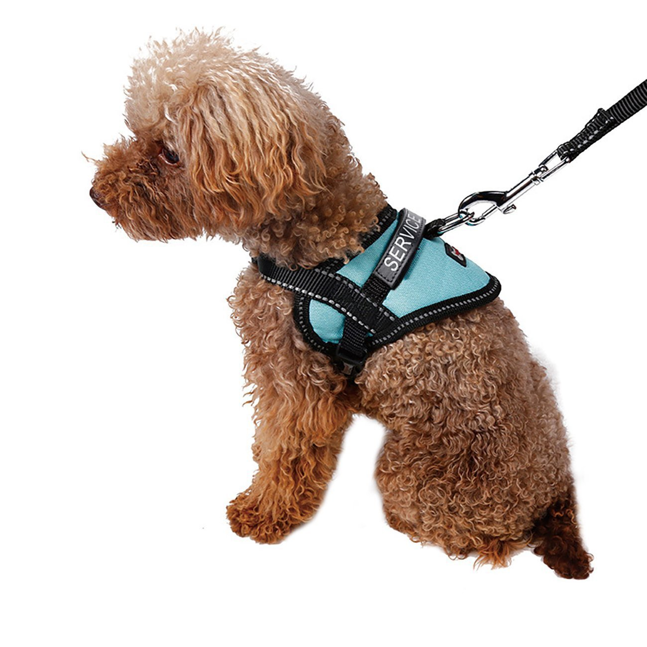 UHeng Service Vest Dog Harness Adjustable Nylon Dog Vest with Reflective Patches for Small Service Dogs in Training