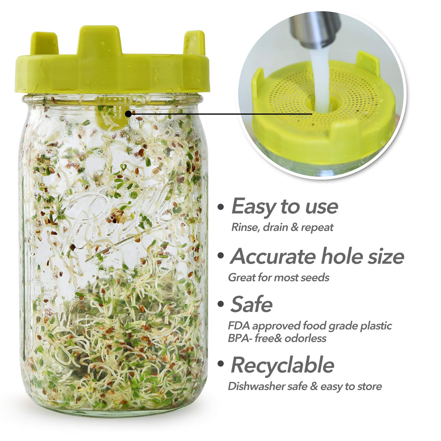 Soligt Easy Rinse & Drain Sprouting Lids for Wide Mouth Mason Jars – 6 Pack by SOLIGT (Image #3)