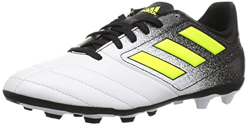 e847ea0340fd adidas Kid s Boy s Junior Ace 17.4 FxG Soccer Shoes  Amazon.ca ...