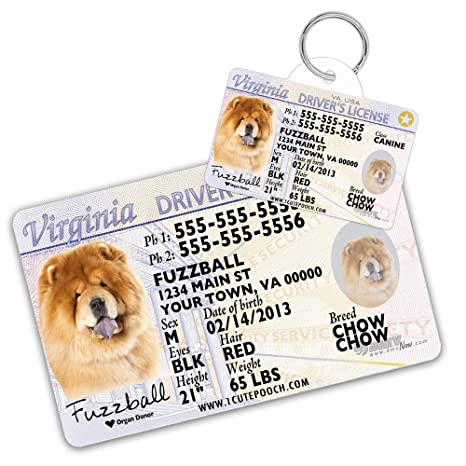 Supplies Amazon Cats Wallet Pet Virginia com Id Pets Dog Driver License Personalized Tag Cat For Custom Tags And Card - Dogs