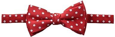 Alvaro Castagnino Men's Bow Tie