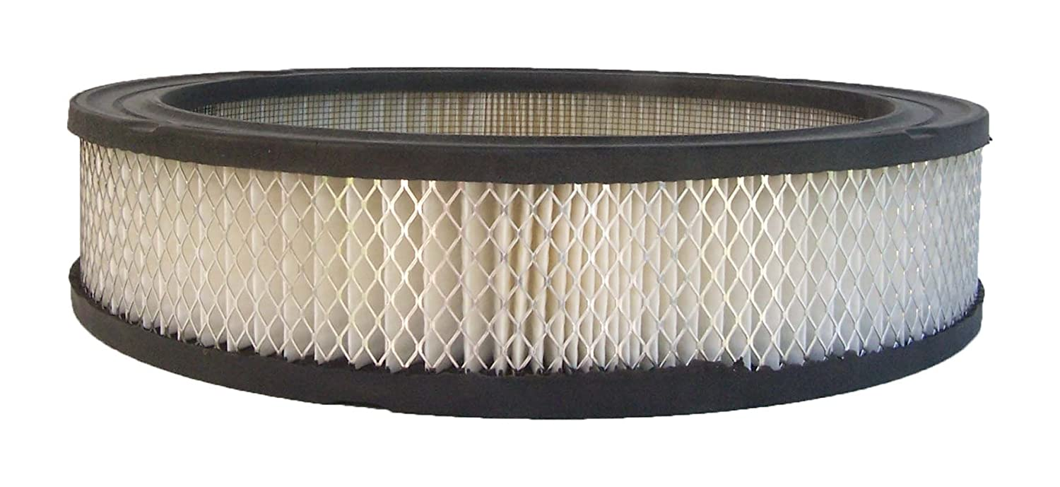 ACDelco A3025C Professional Air Filter A3025C-ACD