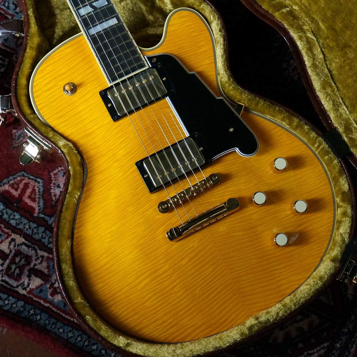 入園入学祝い NYSD-9/ NY NY/ エレキギター NYSD-9 B07RF4YWFL, musicfarm:8c1138e0 --- senas.4x4.lt