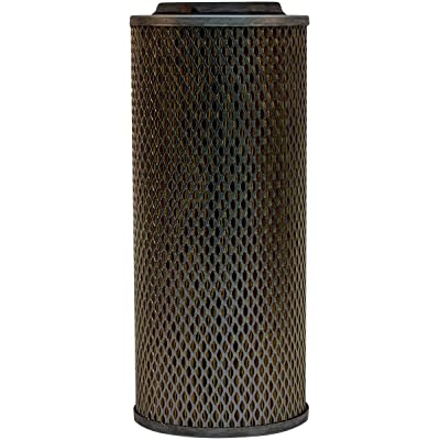 Luber-finer LAF1710 Heavy Duty Air Filter: Automotive [5Bkhe0409166]