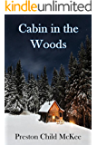 Cabin in the Woods: The Establishment (Thriller: Stories to Keep You Up All Night - Book 1)