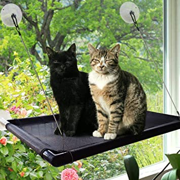 Hamaca para Gato o Gato con Ventosa para Ventana, Perca Duradera con versión actualizada de 4 Grandes ventosas para Cama de Gato con Capacidad para ...