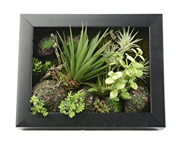 3d artificial flowers wall hanger succulent plants aloe green leaves grass moss stone with imitation wood