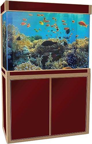 Aqua-Dream-100-Gallon-Fish-Tank