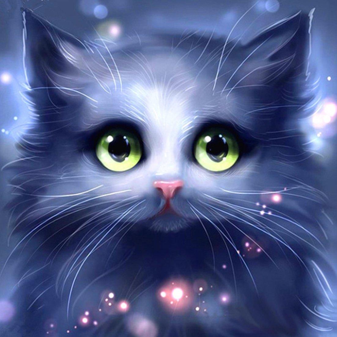 5D Pintura por Diamantes (ITM25476) gato