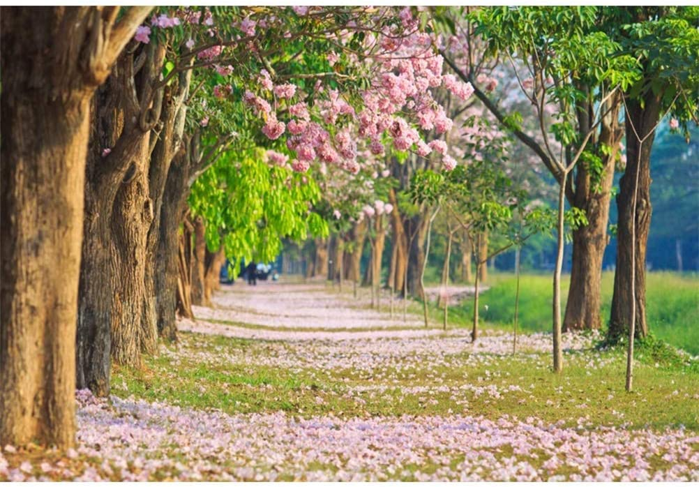 8x6.5ft Spring Park Landscape Polyester Photography Backdrop Blossom Trees Pink Petals Green Leaf Background Wedding Photo Studio Spring Outing Portraits Shooting Leisure Tourism