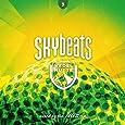 Skybeats 3 (Wedelhütte)