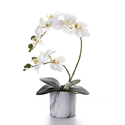 Amazon Livilan Artificial Flower Arrangements White Silk Orchid