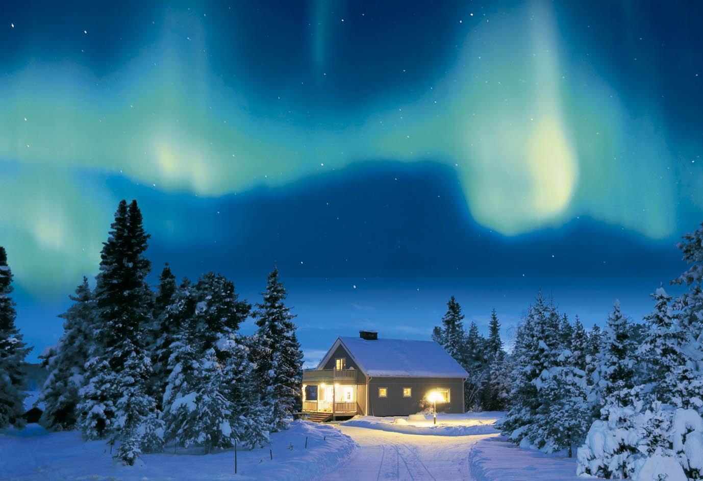 ¡envío gratis! Aurora forest of 450 small piece mystery both sides sides sides - Sweden 44-509 (japan import)  liquidación hasta el 70%