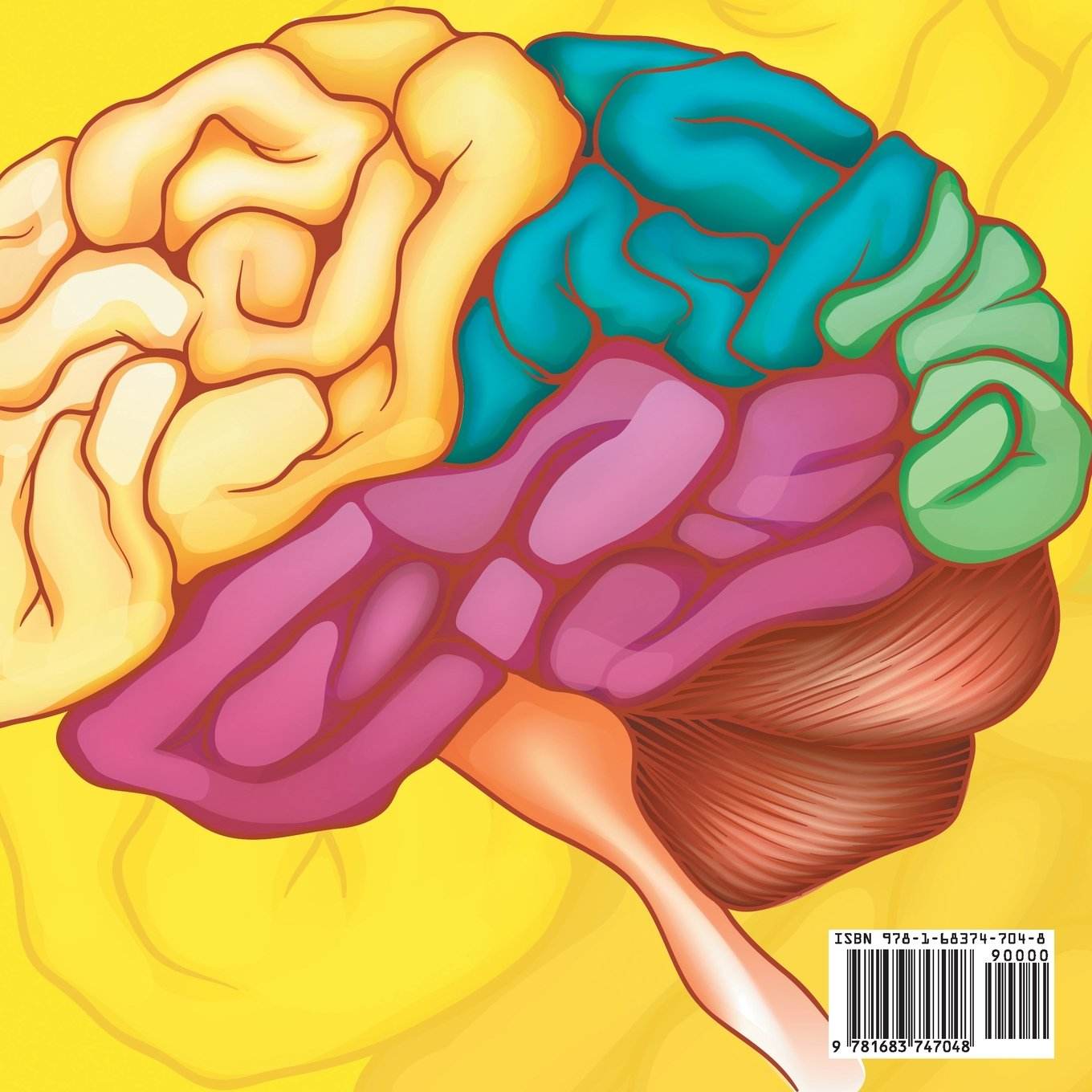 Think Tank The Human Brain And How It Works Anatomy For Kids