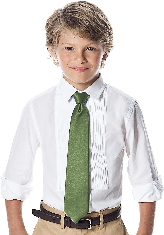 Boys 14 Matte Satin Zip Neck Tie by Dessy