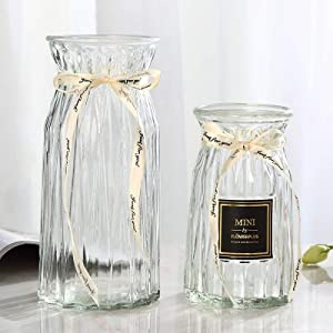 XILEI Glass Vases for Flowers,Clear Bud Vase Set of 2 ,Flower Vase Decorative for Home Decor, Desk Placement and Gift (B1)
