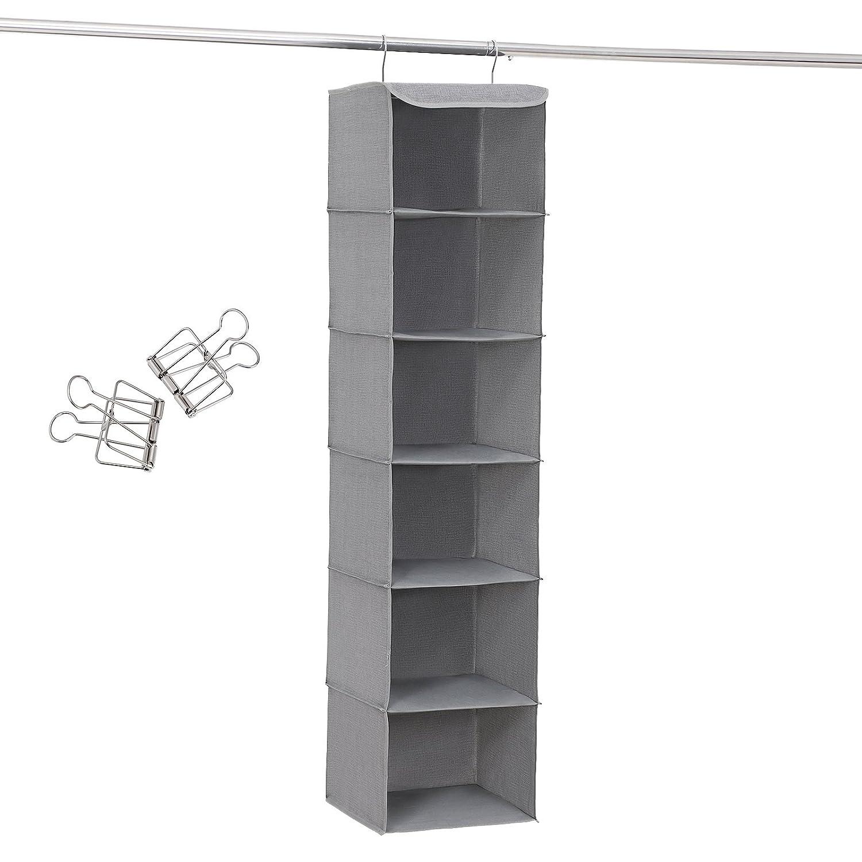 SONGMICS 452097, - Organizador Colgante con 6 Compartimentos, Interior con Marco de Metal, 2 Grapas Gratis, para armarios. En Diferentes Alturas, Gris, ...