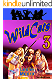 Wildcats 3: A Rock'n'Roll Odyssey... (English Edition)