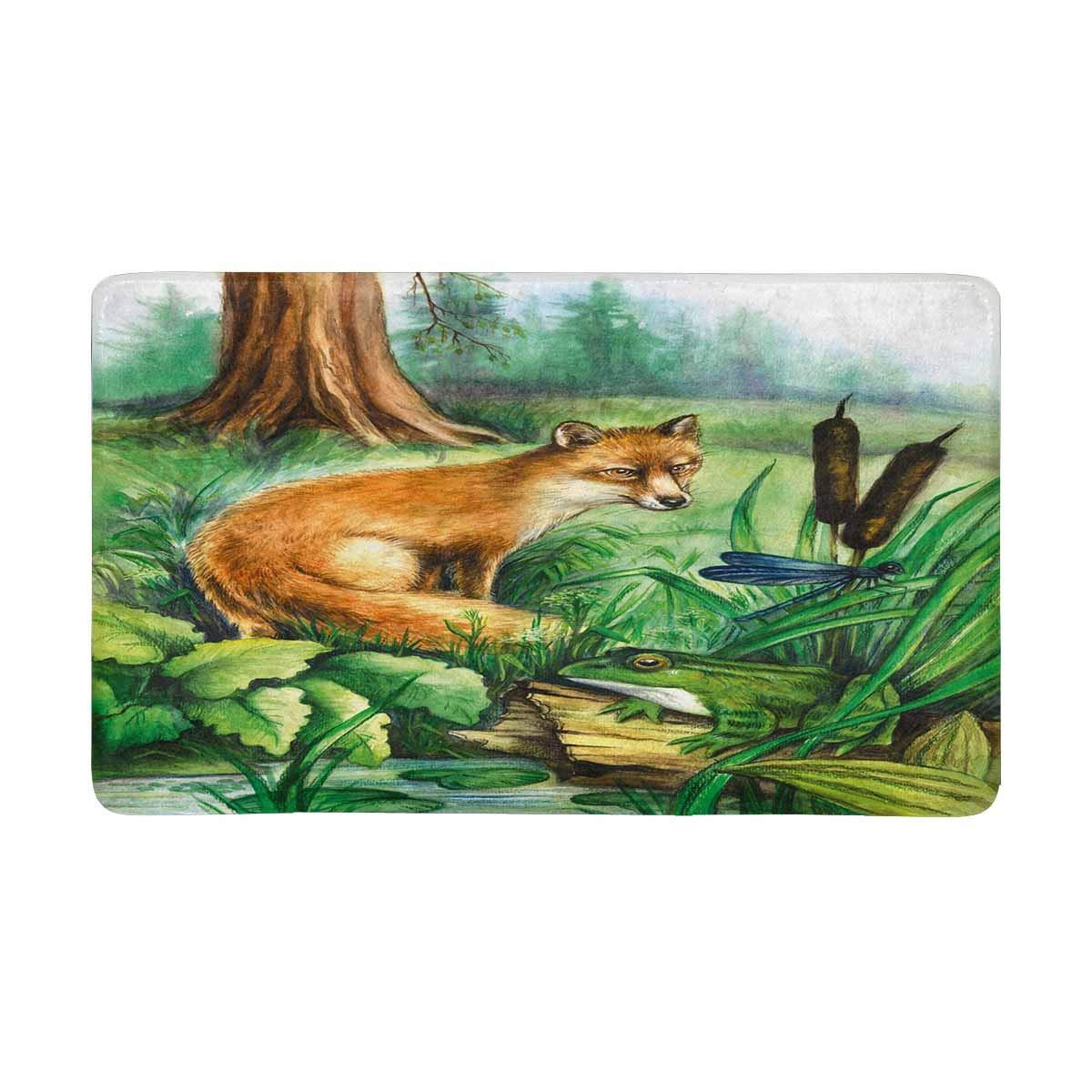 InterestPrint Fox, Frog, Swamp, Forest Indoor Doormat Latex Backing Non Slip Door Mat Entrance Rug 30''(L) x 18''(W)