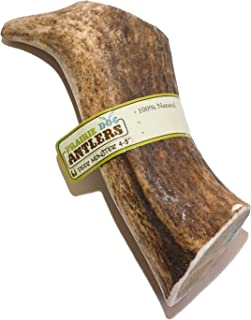 """product image for Prairie Dog Pet Products Deer Monster Antler Treat, 4-5"""" (Assorted Color)"""