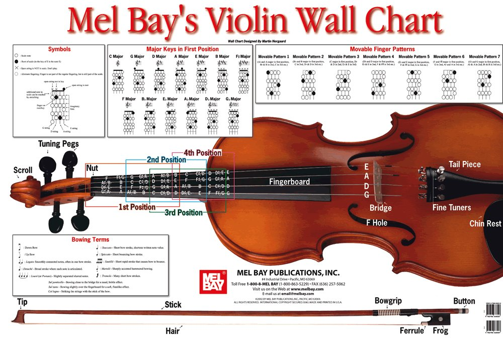AmazonCom Violin Wall Chart By Martin Norgaard Everything Else