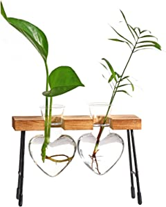 Deloky Desktop Glass Planter Bulb Vase-Heart Glass Hydroponic Vases Plant Propagation Station with Retro Wooden Stand for Hydroponics Plants Home Garden Wedding Decor (2pcs Heart)