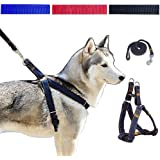 NOVMAY Denim Heavy Duty Dog Collar Leash Harness & Traction Rope Leash for Daily Training Walking Running - Small and Large Dog