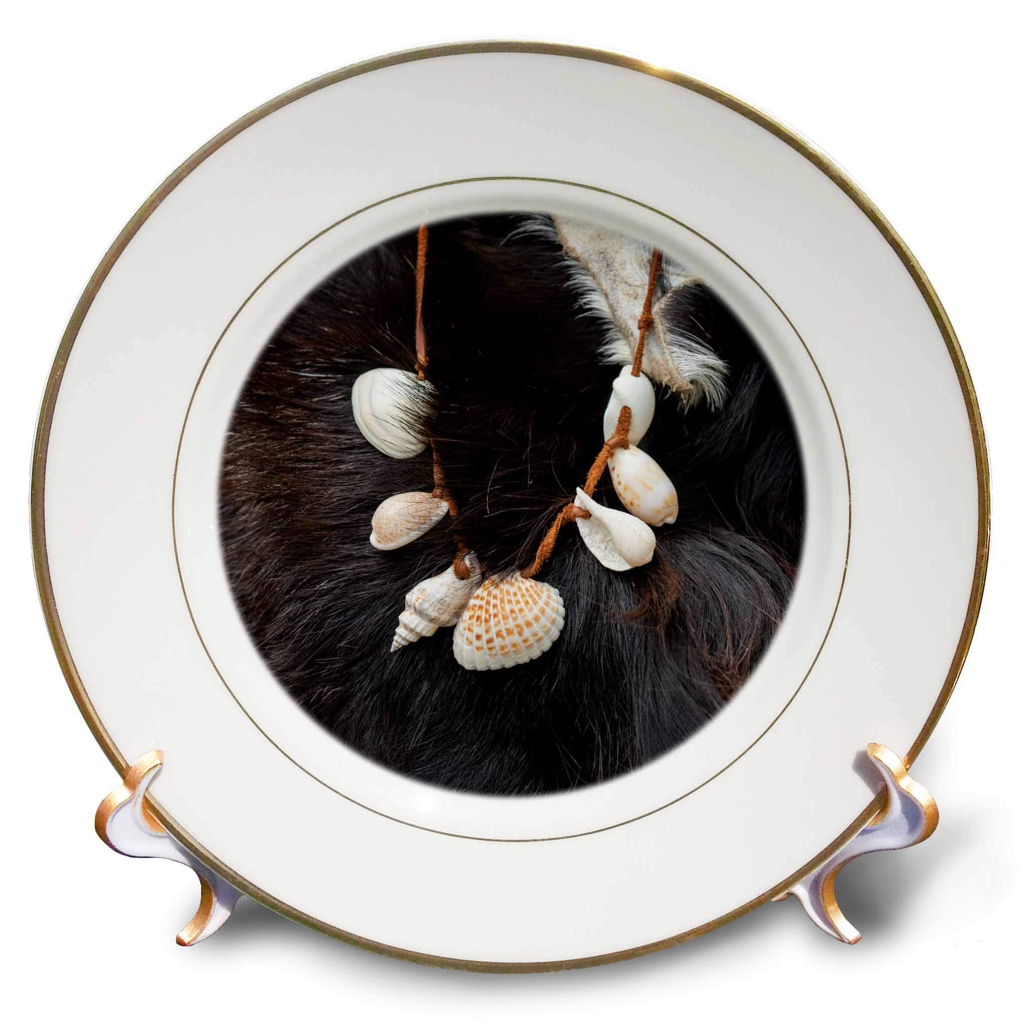 3dRose Alexis Photography - Objects Misc. - Image of sea Shells on a String and an Animal Fur. Stone Age Decor - 8 inch Porcelain Plate (cp_295022_1)