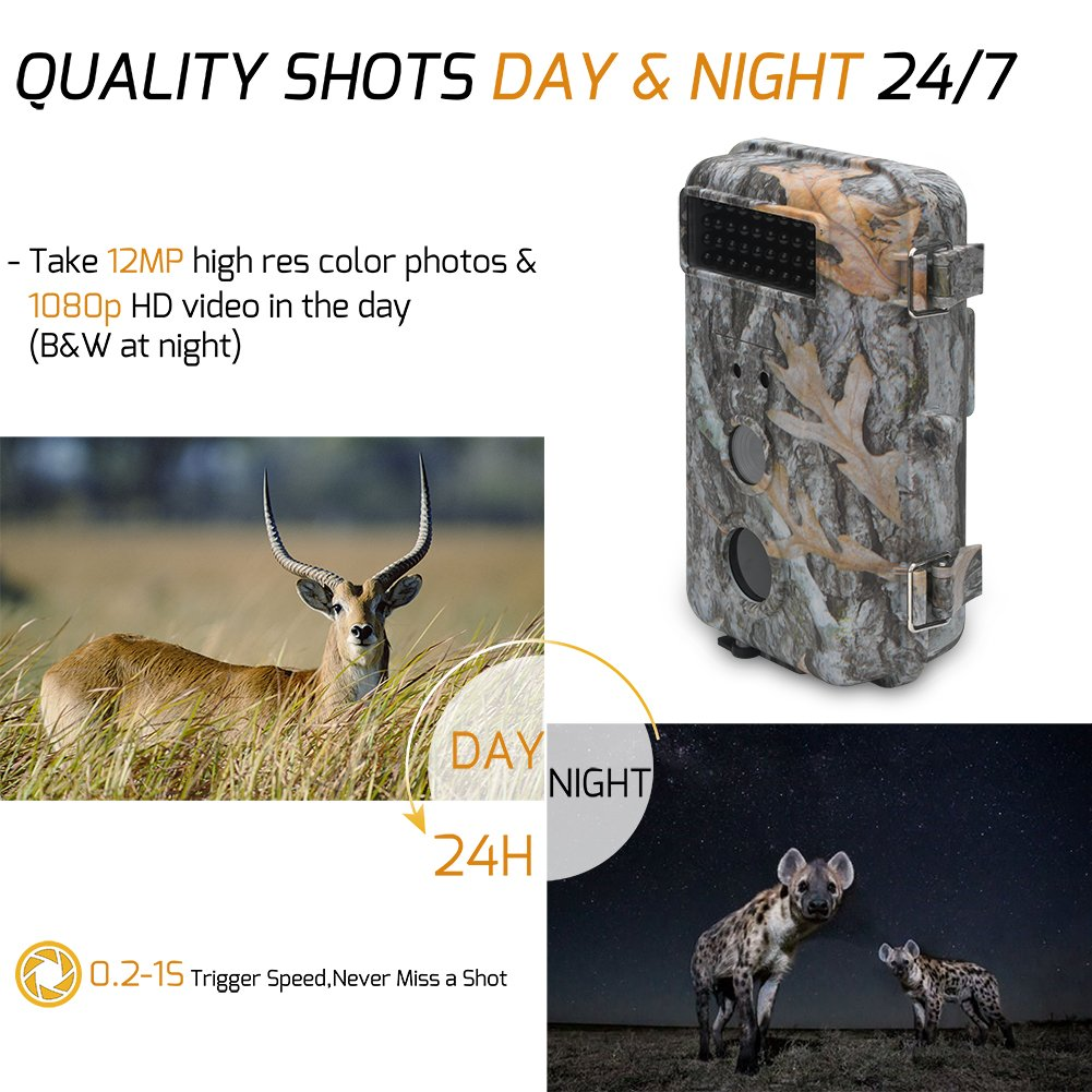 DigitNow! 16MP 1080 HD Waterproof Trail &Surveillance Digital Camera with Infrared Night Version up to 65ft in 2.4''LCD Screen &40pcs IR LEDs Wildlife Hunting &Scouting Camera by DIGITNOW (Image #6)