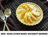 Webake 6 Inch Quiche Pans Removable Bottom Tart