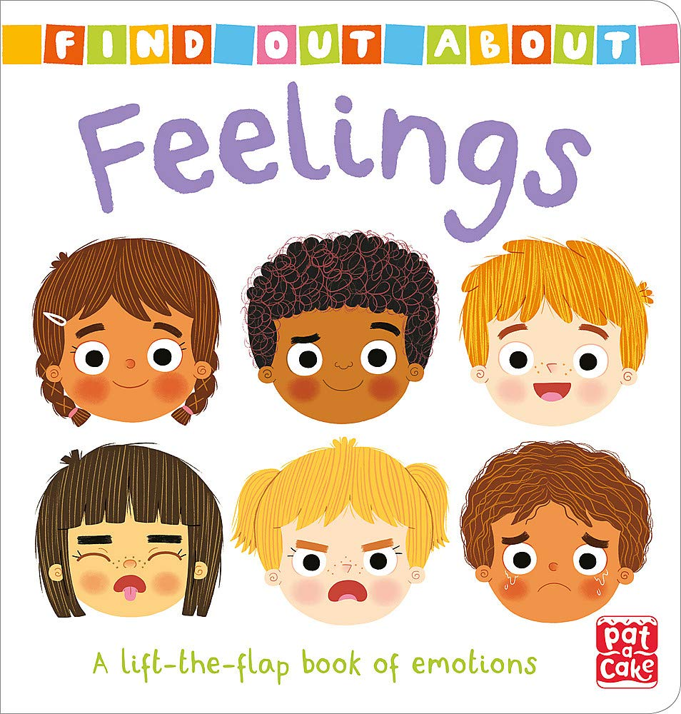 Feelings: A lift-the-flap book of emotions (Find Out About ...