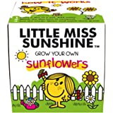 Mr Men Little Miss Sunshine Sunflowers Grow Kit