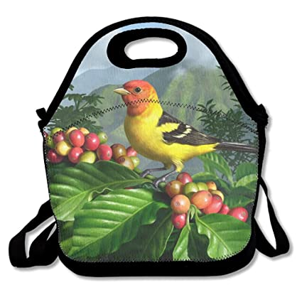 b5210bad6a3d Amazon.com: HYEECR Western Tanager Portable Lunch Tote Bags ...