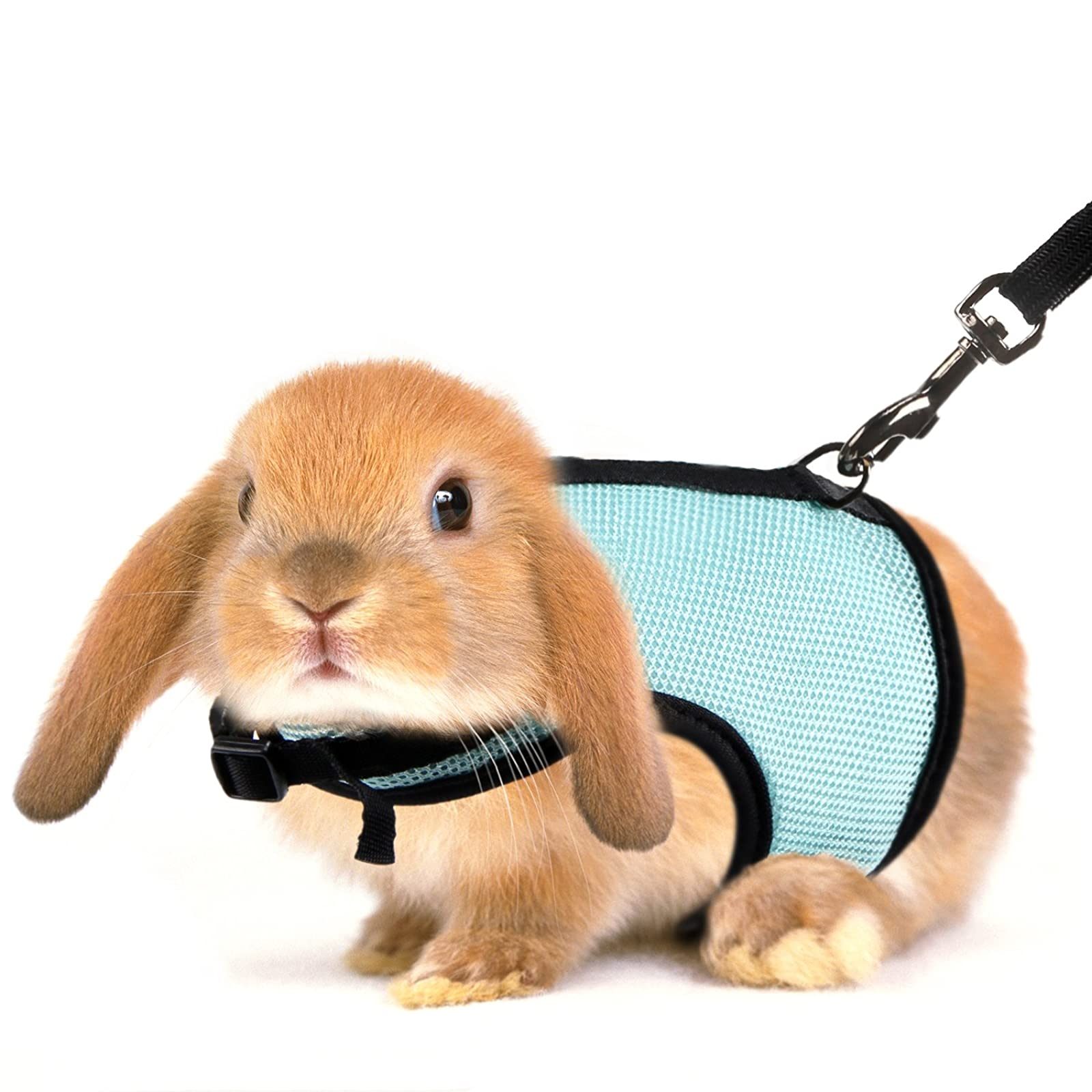 MEWTOGO 2 pcs Adjustable and Breathable Bunny - 5