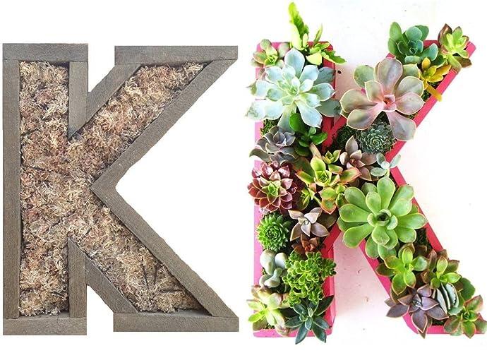 Amazon.com: DIY 12 inch Unfinished Letter Planter Box Monogrammed