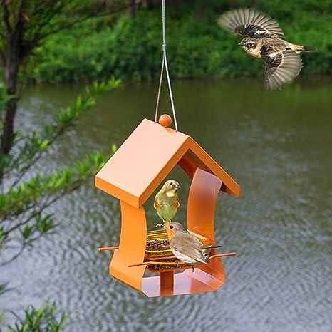 Al Aire Libre Pájaro Alimentador Atrae Pájaros Salvaje Pájaro Alimentador Para Jardín Decoración Y Amantes De Las Aves Y Niños Observación De Aves. Cacoffay,Orange: Amazon.es: Deportes y aire libre