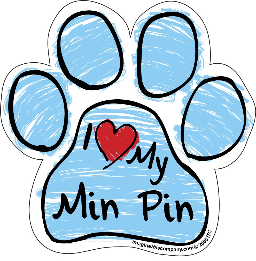 Imagine This Scribble Paw Magnet, Min Pin
