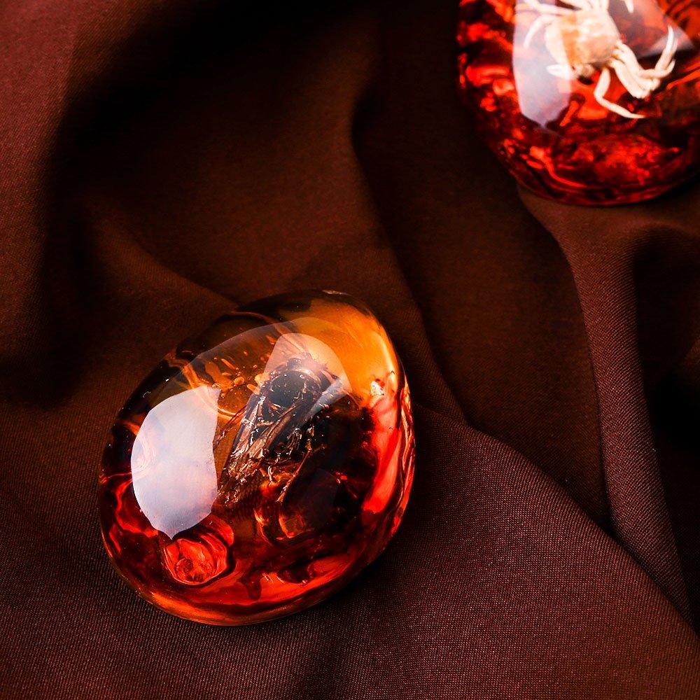 Mariposa /ámbar f/ósil espec/ímenes joyer/ía /ámbar artesan/ías como Regalos creativos xinzhi Insecto /ámbar /ámbar Natural