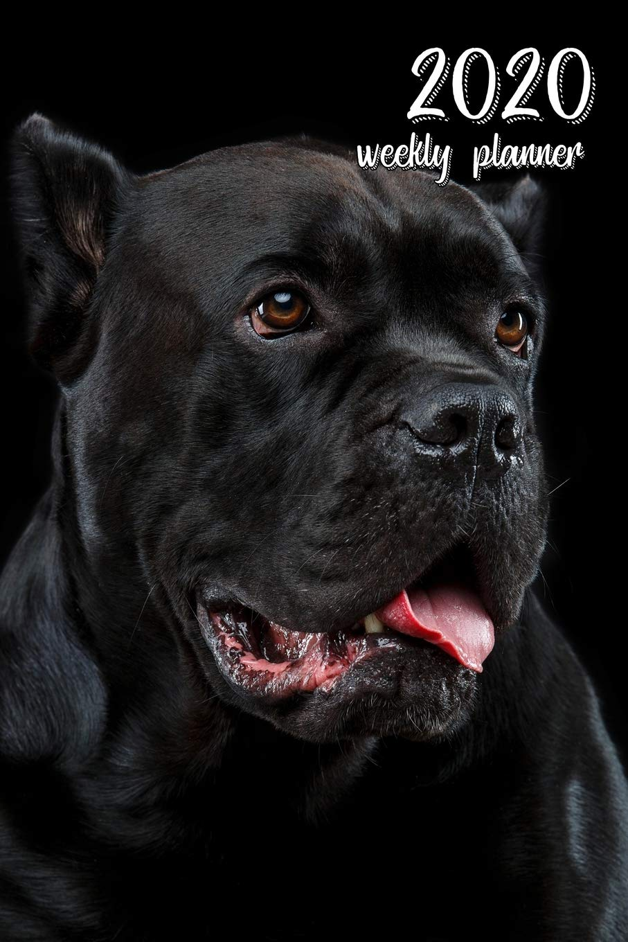 2020 Weekly Planner 6 X 9 In Cane Corso 52 Weekly Calendar