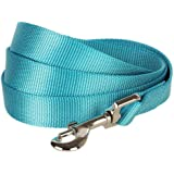 Blueberry Pet Durable Classic Solid Color Dog Lead 150 cm x 1.5cm in Medium Turquoise, Small, Basic Nylon Leads for Dogs