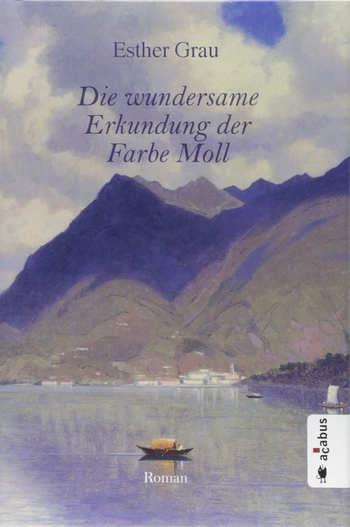 Die wundersame Erkundung der Farbe Moll: Roman