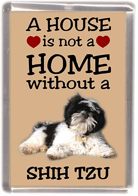 House Is Not A Home Pup Shih Tzu Magnet