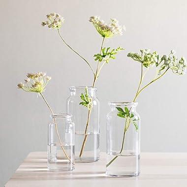 CASAMOTION Vases Hand Blown Art Glass Vase, Centerpiece Vases for Table, Clear, Set of 3