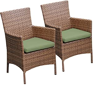 TK Classics 2 Piece Laguna Dining Chairs with Arms, Cilantro