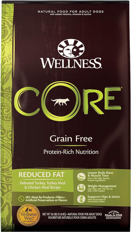Wellness CORE Grain-Free
