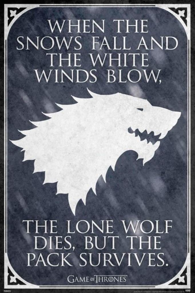 Pyramid America Game of Thrones Lone Wolf TV Show Cool Wall Decor Art Print Poster 24x36