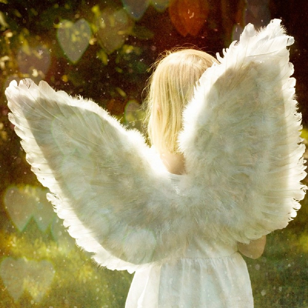ANGEL WINGS TYPE FRAGRANCE OIL - 25 LB - FOR CANDLE & SOAP MAKING BY VIRGINIA CANDLE SUPPLY WITH WITHIN USA by Virginia Candle Supply