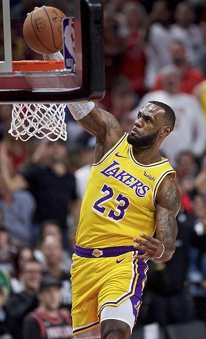 59b831a0a1ff2 Amazon.com: Lebron James - Dunk - NBA Poster - Los Angeles Lakers - 24