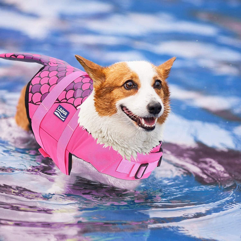 JanTeelGO Dog Lifejacket Safety Vest S, Orange Clownfish Hound Puppy Buoyancy Aid Floats Lifesaver Preserver Clothes Swimming Swimwear Costume Coat Life Jacket for Small Medium Large Pet